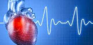 Cardiologists are physicians who do additional study and training to prevent, diagnose and treat conditions of human cardiovascular system and disorder of heart
