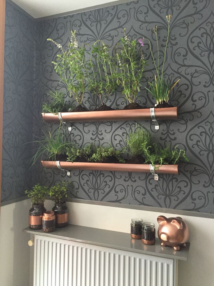 Indoor vertical herb garden. Pvc gutter and copper spray paint to give it a steampunk-ish look! Old pickle jars and spray paint equals cool planters!