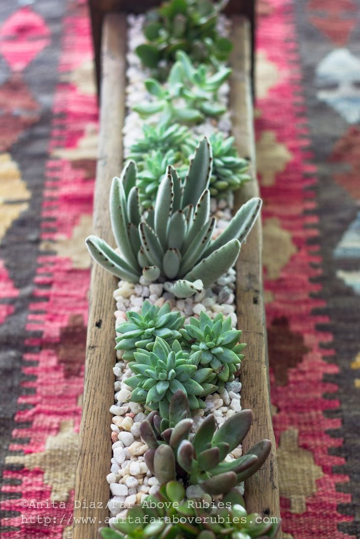 Far Above Rubies Succulent Planter Box Quot Diy Home Decor