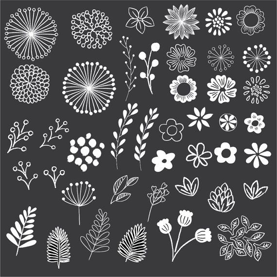 chalkboard floral elements clip art set by birdiydesign