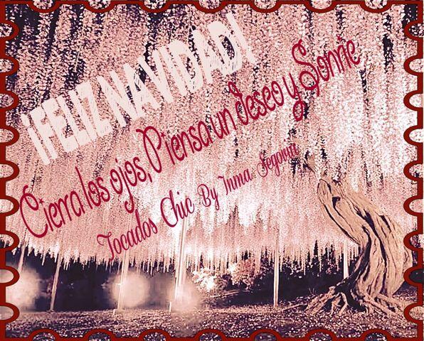 Feliz Navidad!! q todos vuestros deseos se cumplan!!