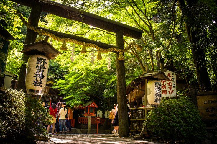 https://flic.kr/p/eBEscp | the shrine of matchmaking (Nonomiya-shrine, Kyoto) | 1/70s f/8.0 ISO500