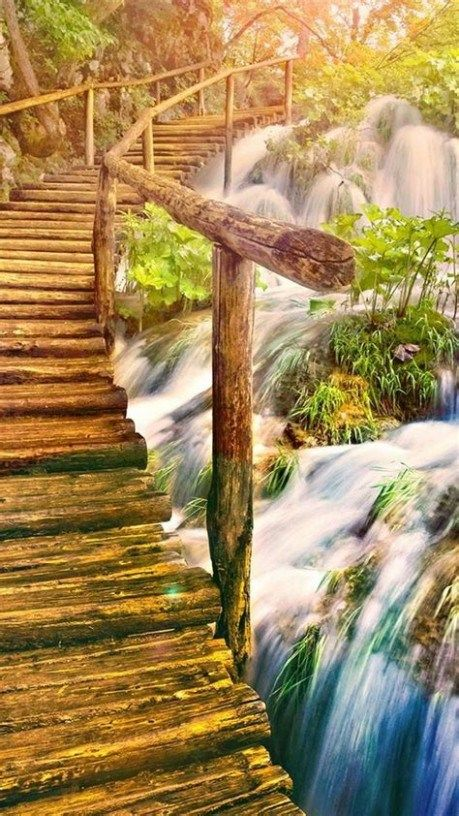 Home Screen Nature Wallpaper Hd