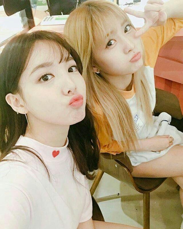nayeon & momo