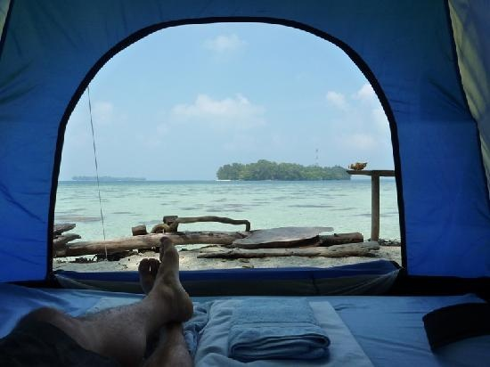 Tiger Islands Eco Resort & Village: View from the tent
