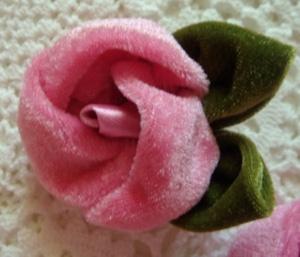 Pink Velvet Roses