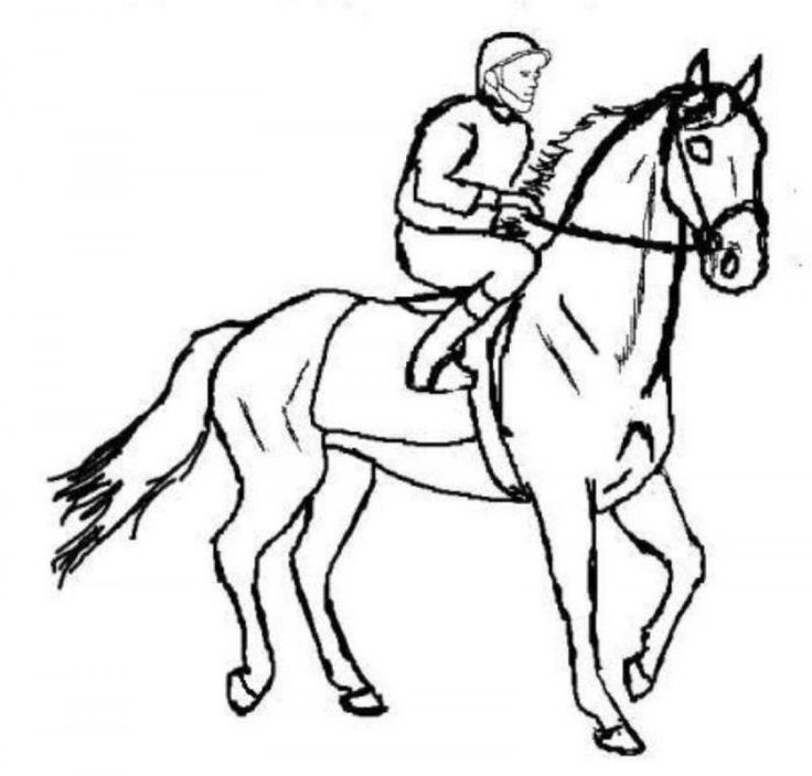 thoroughbred coloring pages - photo#27