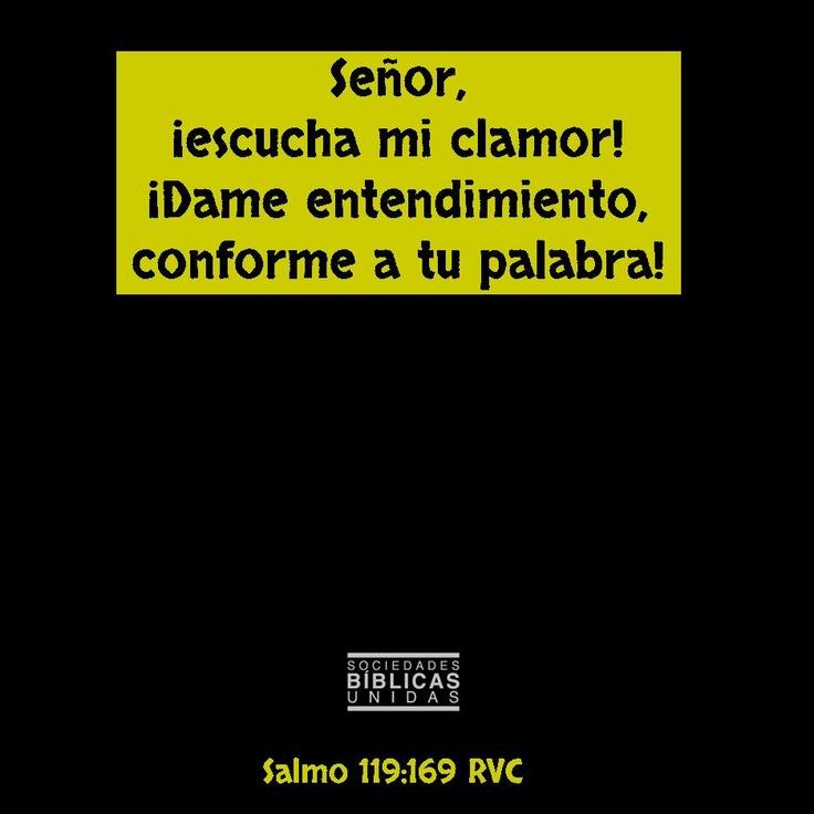 Señor, ¡escucha mi clamor! Dame entendimiento....Salmo 119:169