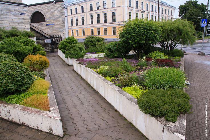 Красивое и недорогое озеленение города: gre4ark
