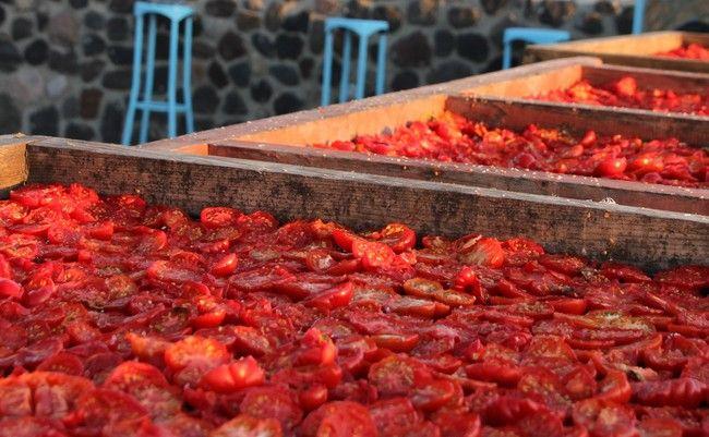 Haal Italië in huis met zelfgemaakte (!) zongedroogde tomaatjesZie voor het recept http://www.culy.nl/recepten/haal-italie-in-huis-met-zelfgemaakte-zongedroogde-tomaatjes/