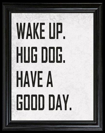 Have you hugged your dog today?