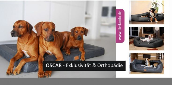 tierlando - Orthopädische Hundematratze OSCAR