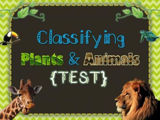 free classifying organisms plants animals test from tick tock teach on teachersnotebook. Black Bedroom Furniture Sets. Home Design Ideas