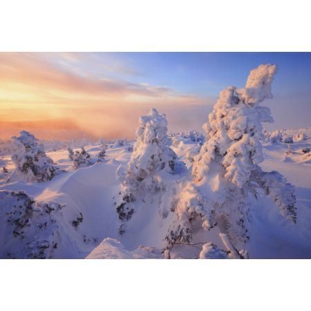Mont Logan At Sunrise Gaspesie National Park Quebec Canvas Art - Yves Marcoux Design Pics (17 x 11)