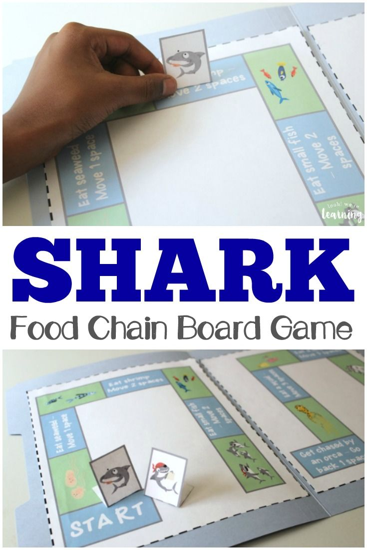 Learn about the fascinating world of sharks with this printable shark food chain game! #spon