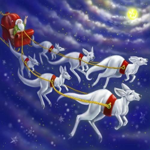 Santa and sleigh, delivering presents to Australia children, with his six white boomers (white kangaroos).