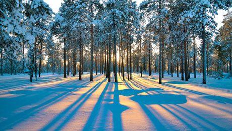 Ο καιρός την Πέμπτη- Σιβηρία ή Αλάσκα ;;;