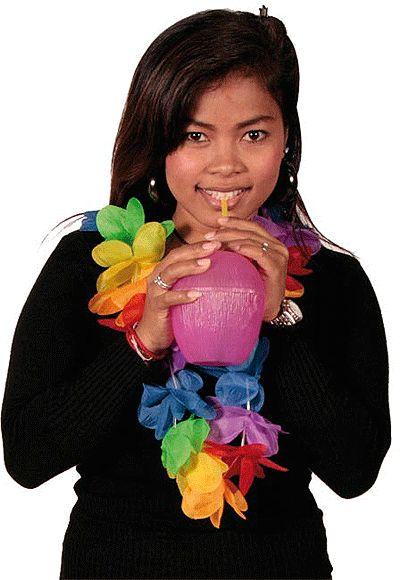 Hawaii bloemen slinger gekleurd. Hawaii of tropisch feestje? Bij Fun en Feest vind je de leukste Hawaii feestartikelen, kostuums en accessoires. Toppers Crazy Summer accessoires tip!