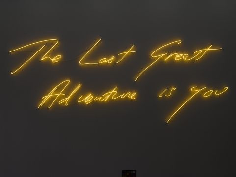 The Last Great Adventure is you - Tracey Emin - 2014. Photo: Patrick Dandy