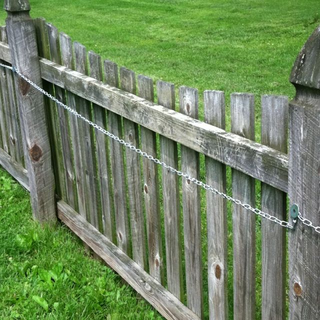 8 Backyard Ideas To Delight Your Dog: Chain Fastened Inside Stopped Dogs Jumping Out. Cheaper