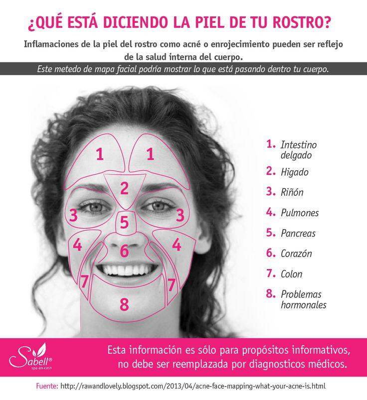 Infórmate aquí qué parte de las zonas de la cara son el reflejo de una parte de nuestro cuerpo interno. El acné y el enrojecimiento son alerta de que algo anda mal allí.  #salud #belleza #tips #relajacion #spa