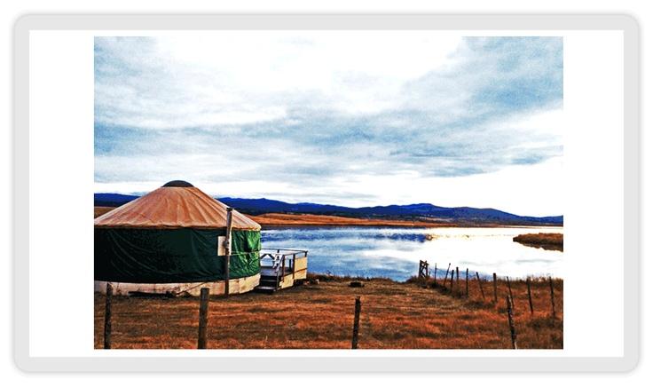 DLR Yurts and Camping