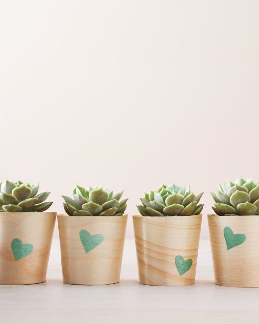 With an assembly-line approach, you can quickly give Valentine's Day plants like these trendy succulents to friends, coworkers, or teachers.