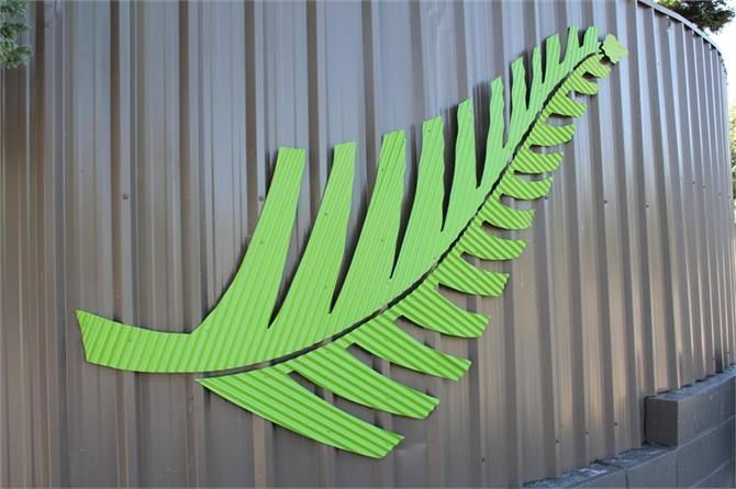 The Ferns - Taupo