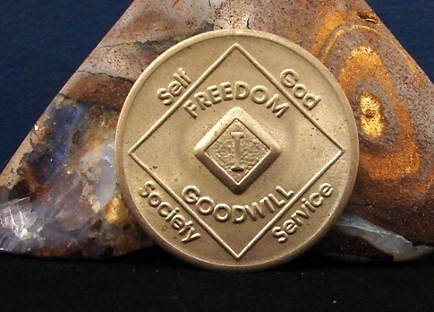 Vintage Medallion 1 Year NA Coin Chip Token - eBay - Recovery ...