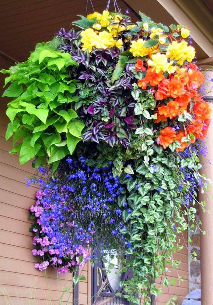 un bouquet suspendu au balcon rempli dune plante tombante et de variétés de plantes retombantes