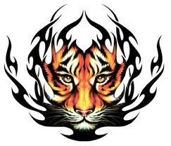 Tiger Tattoos And Meanings- Tiger Tattoo Designs And Ideas