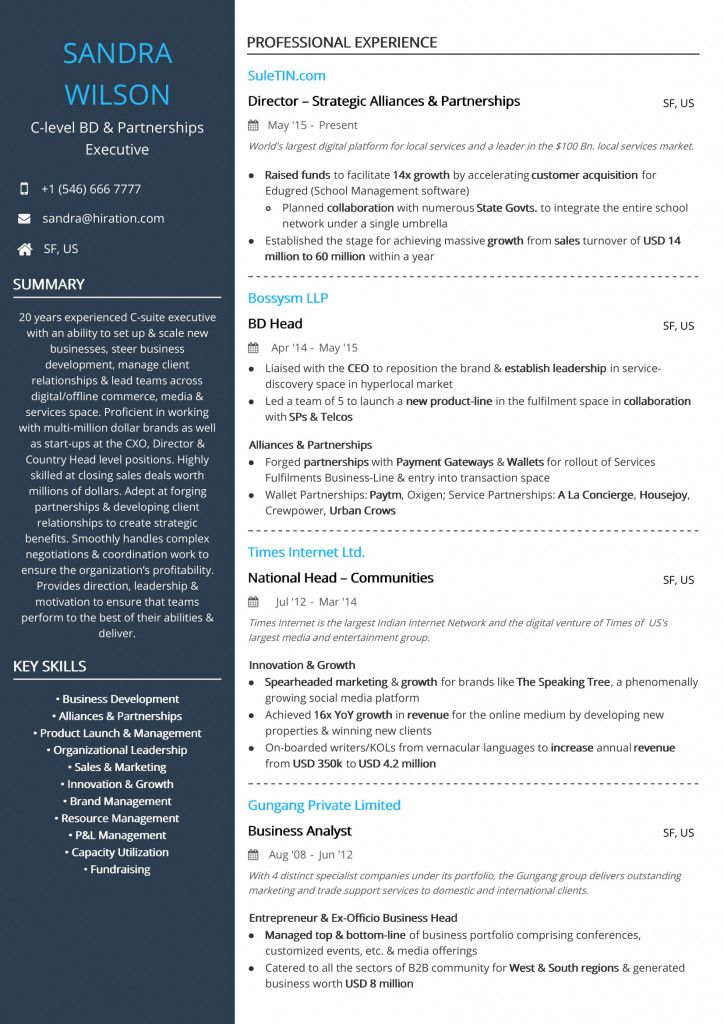 C Level Resume Examples 2021 In 2021 Resume Examples Resume Standard Cv Format