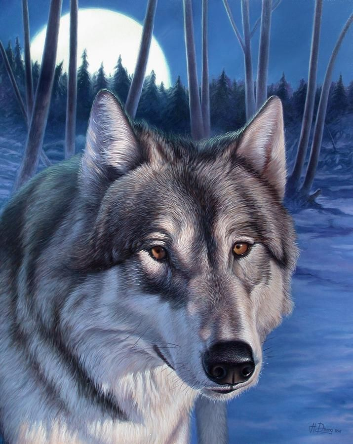 paintings of wolfs | Wolf In Moonlight Painting by Hans Droog - Wolf In Moonlight Fine Art ...