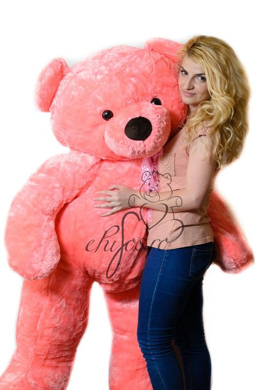 Urs gigant roz