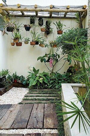 Pergola orquídeas