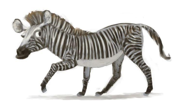 Zebra Character Design : Best creature design zebras images on pinterest