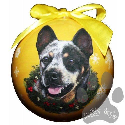 161 best images about dogs blue heeler beagle mix on pinterest