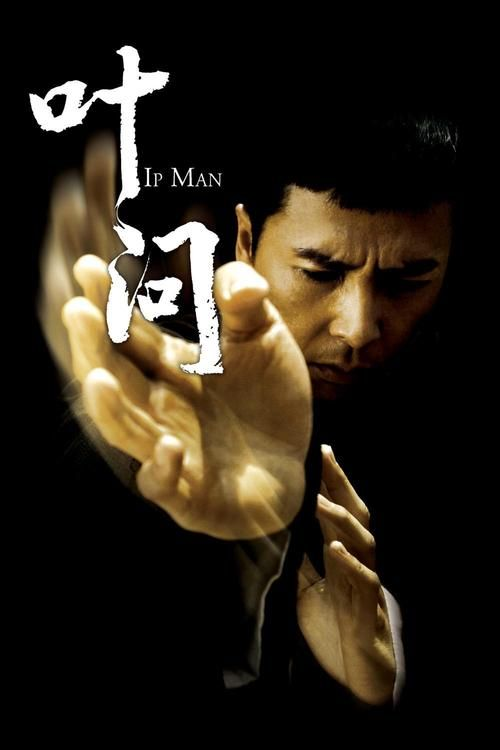 Ip Man - simply the best martial arts film made within the last 10 years
