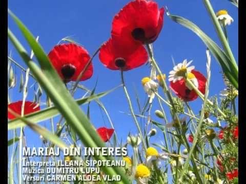 MARIAJ DIN INTERES-Ileana Sipoteanu.avi