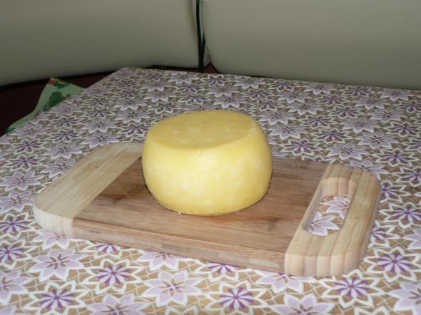Сыр домашний