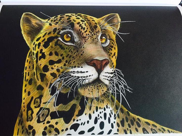 Jaguar 2 Crystal S