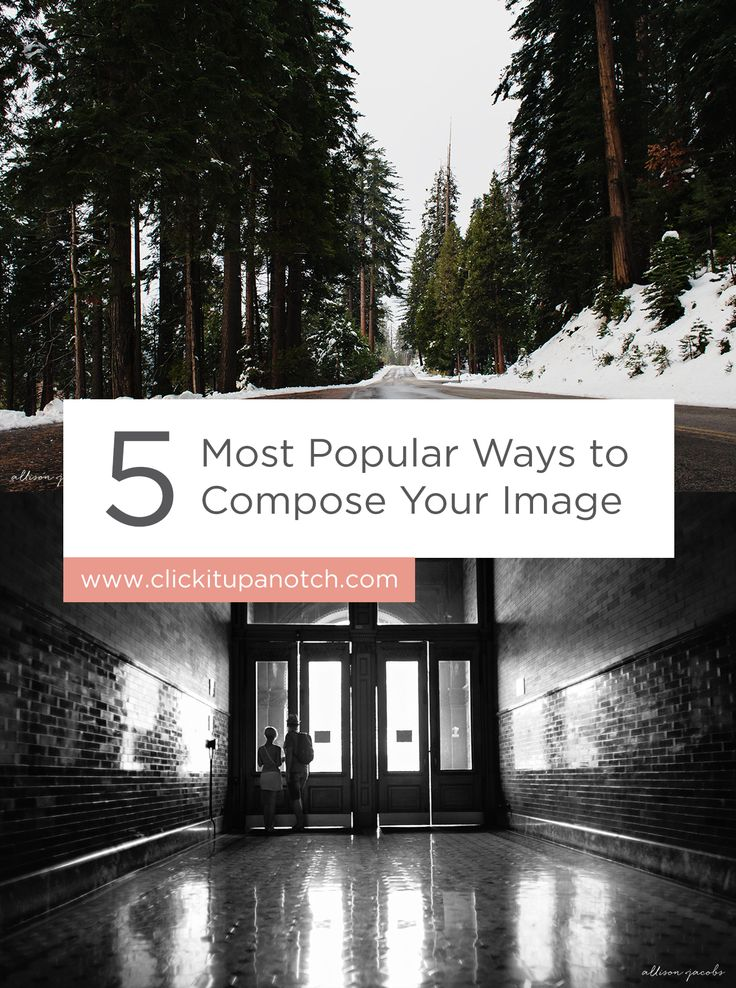 """This is a great guide for beginners learning about composition! Read - """"5 Most Popular Ways to Compose Your Images"""""""