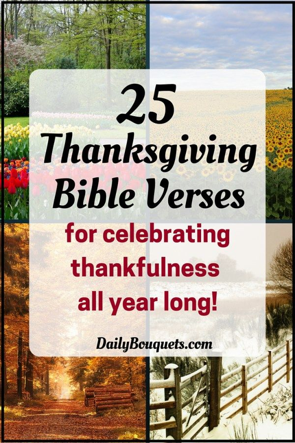 17 best ideas about thanksgiving bible verses on pinterest