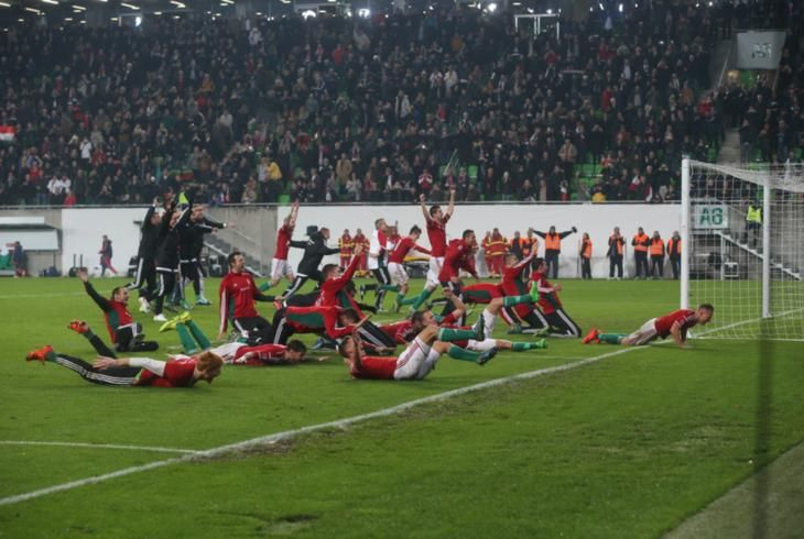 Hungarian football team celebrating after qualifying to the European Championship! #euro2016 #france