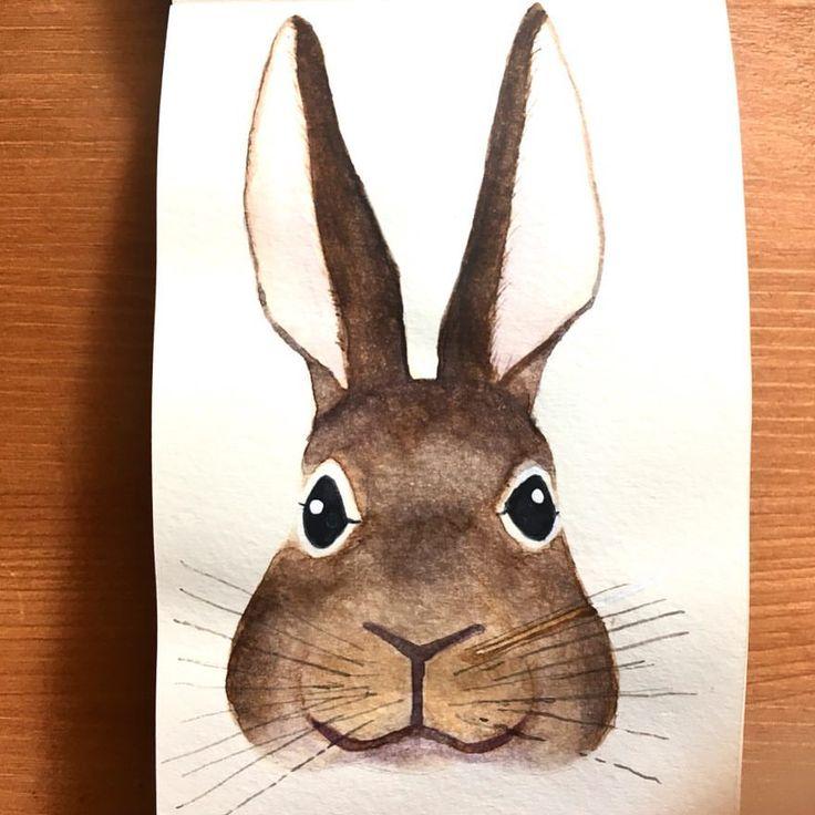 Helise (@scandipan) sur Instagram : « #watercolor #rabbit #lapin #illustration #animalillustration #aquarelle #scandipan»
