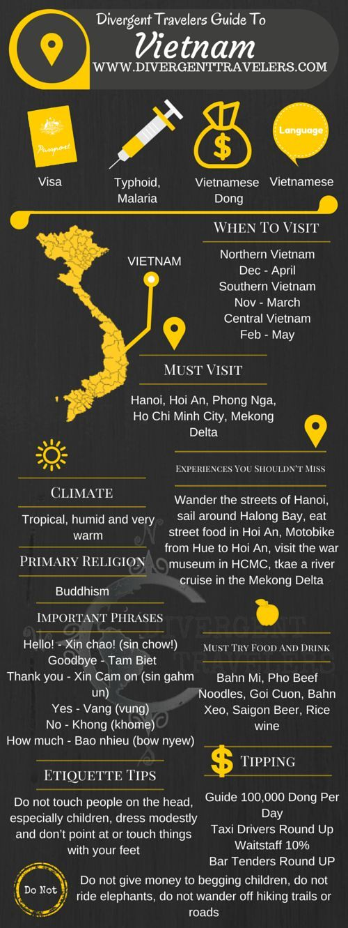 Divergent Travelers Travel Guide, With Tips And Hints To Vietnam . This is your ultimate travel cheat sheet to Vietnam. Click to see our full Vietnam Travel Guide from the Divergent Travelers Adventure Travel Blog and also read about all of the different adventures you can have in Vietnam at http://www.divergenttravelers.com/destinations/vietnam/