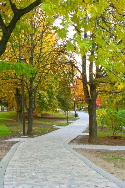Philosophers Walk, Toronto beside the Royal Ont Museum & going to University of Toronto