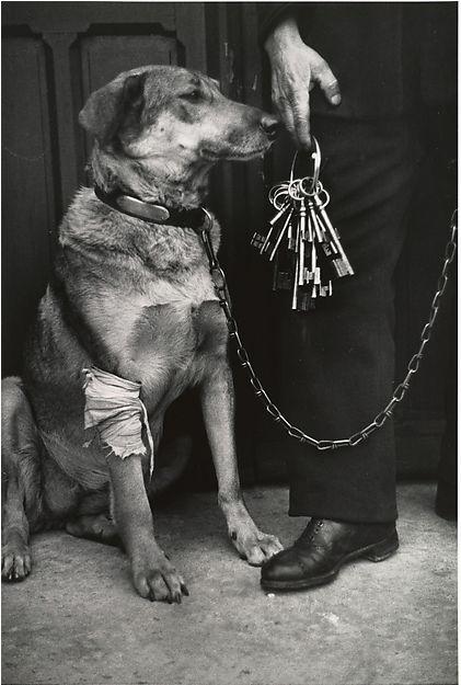 André Kertész      Mr. Caillot's Dog and the Keys of Notre Dame, Paris     1928