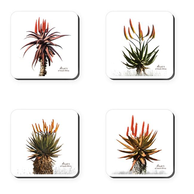 Aloes of South Africa - coasters    These coasters feature beautiful, bright aloe photographs – one of the gems of South Africa's plant kingdom.    Buy online at NguniGalore.com - Delivery to anywhere in South Africa is FREE