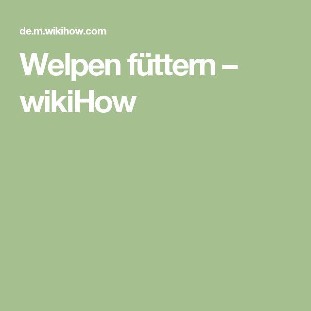 Welpen füttern – wikiHow